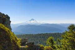 Mt 从落叶松属山看见的敞篷 免版税库存图片