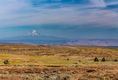 Mt 距离的亚当斯从Tygh里奇在俄勒冈 免版税库存图片