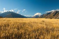 ландшафт mt клобука Национальный парк кашевара, Новая Зеландия Стоковое Фото