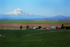 Mt Adams Overlooks Farm Stock Image