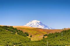 MT Adams van Dufur Oregon wordt gezien dat stock foto
