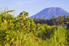 Mt. Agung, Amed, Bali. Royalty Free Stock Images