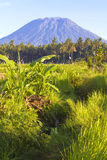 Mt. Agung, Amed, Bali. Royalty Free Stock Photos