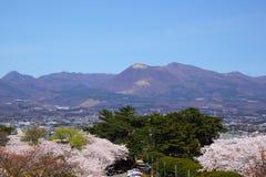 Mt. Akagi und Kirschbaum Lizenzfreies Stockfoto