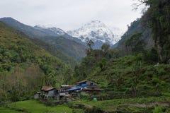 Mt Annapurna południe w Nepal zdjęcia royalty free