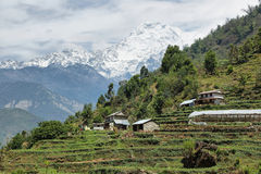Mt Annapurna South in Nepal stock photography