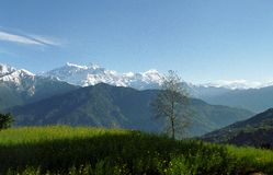 Mt.Annapurna in spring Royalty Free Stock Photography