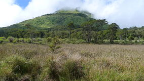 Mt Apo. In the Philippines royalty free stock photo