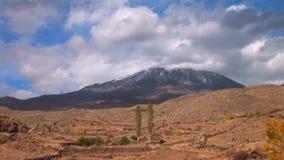 MT Ararat van overkant stock videobeelden