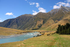 Mt Aspiring National Park. Matukituki River and mountains in Mount Aspiring National Park, New Zealand stock photos