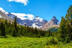 Mt Athabasca chez Parker Ridge sur la route express de champs de glace en jaspe photos stock