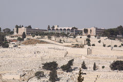 Mt. Azeitonas, Jerusalem, Israel Foto de Stock Royalty Free