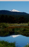 Mt. bachelor. S image is reflected in a river in oregon Royalty Free Stock Photo