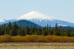 Mt Bachelor Deschutes Forest Stock Images