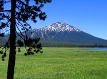 Mt. Bachelor with Sparks Lake, Oregon. Mt. Bachelor with ski slopes, Sparks Lake, alpine meadow, and pine tree Royalty Free Stock Photo