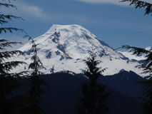 Mt Baker. Located in Washington State royalty free stock photo
