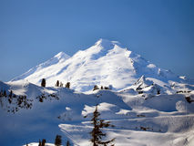 Mt Baker. From the North with Coleman Pinnacle royalty free stock photos