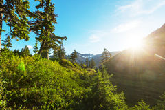 Mt Baker Area Stock Images
