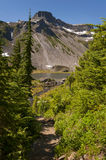 Mt. Baker National Forest Royalty Free Stock Photo