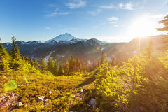 Mt Baker Stock Photography