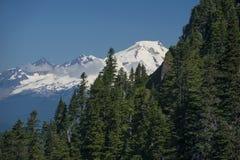 Mt. Baker from Sauk Mountain Royalty Free Stock Image