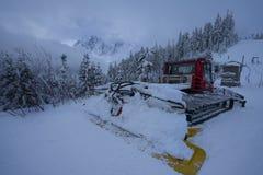 Mt Baker Ski Area Royalty Free Stock Image