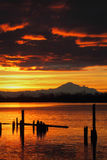 Mt. Baker Sunrise over Fraser River vertical Royalty Free Stock Images