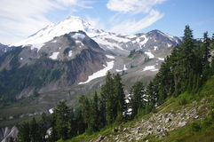 Mt. Baker in Washington. State, USA Royalty Free Stock Images