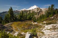 Mt. Baker, Washington. Royalty Free Stock Photos