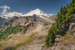 Mt. Baker, Washington. Stock Image
