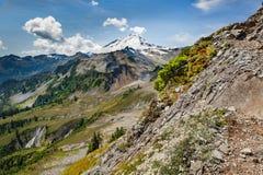 Mt. Baker, Washington. Royalty Free Stock Image