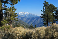 Mt. Baldy, California. Mt. San Antonio, commonly referred to as Mt. Baldy or Old Baldy Peak (el. 10,068 ft.), in the San Gabriel Mountains above Los Angeles as Royalty Free Stock Photo