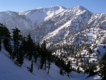 Mt. Baldy in Winter Royalty Free Stock Images
