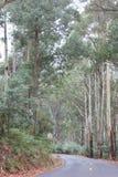 Mt Bulla Tourist Road, Victoria, Australia Stock Photos