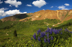 Mt Butte Baldy близко Crested, CO Стоковое Фото