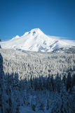 Mt. Capa, inverno, Oregon foto de stock royalty free