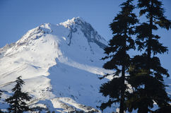 Mt Capilla, invierno, Oregon Fotografía de archivo libre de regalías
