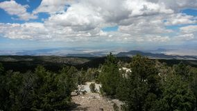 MT. Chareston. Views of forest from mount charleston in las vegas Stock Images
