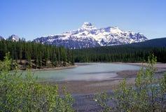 Mt.Christie Jasper National park. Along hwy 93 Royalty Free Stock Photos
