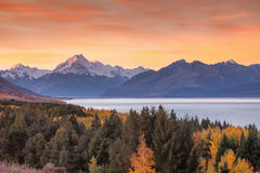 Mt. Cook Royalty Free Stock Image