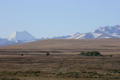 Mt Cook over dry farmland Royalty Free Stock Images
