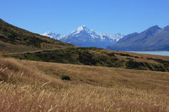 Mt Cook over farmland Royalty Free Stock Image
