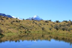 Mt Cook over Pond Stock Images