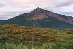 Mt Crested Butte Butte близко Crested, CO Стоковые Фото