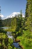 Mt Dżdżysta i lasowa zatoczka Obrazy Stock