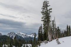 Mt Dżdżysty niski śnieżny spadek na pobliskim szczytami zdjęcia royalty free