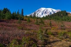 Mt Dżdżysty Od raj doliny Zdjęcia Stock