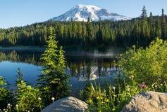 Mt Dżdżysty Odbicie jeziora ranek Zdjęcie Royalty Free