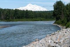 Mt Denali et la rivière de Talkeetna Image libre de droits