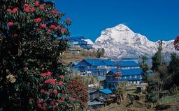 Mt Dhaulagiri, Ghorepani Fotografia Stock Libera da Diritti